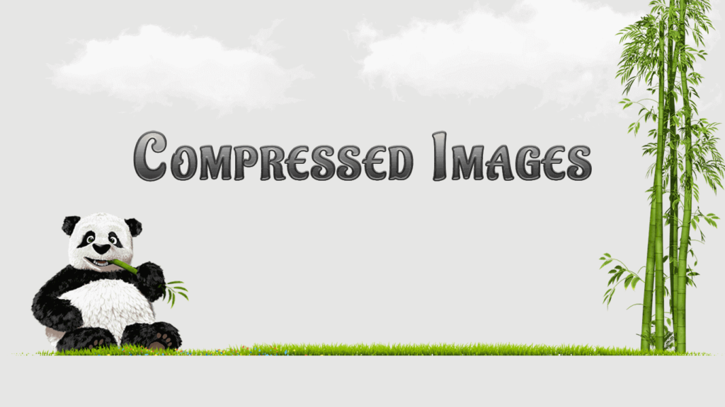 Compressed image